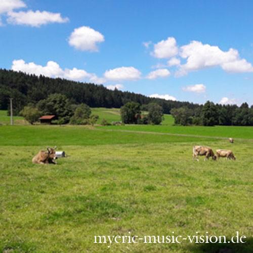 SommerAllgau-c-myeric-music-vision-de