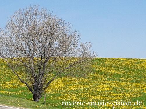 Auerbergland-Erwachen-c-myeric-music-vision-de