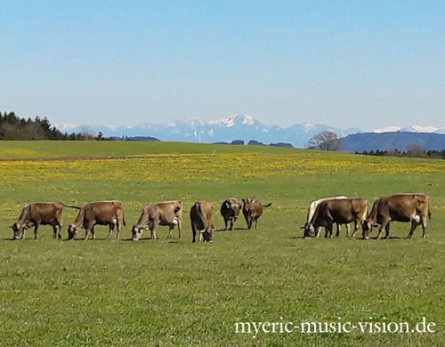 Berg-Panorama-in-Ingenried-c-myeric-music-vision-de